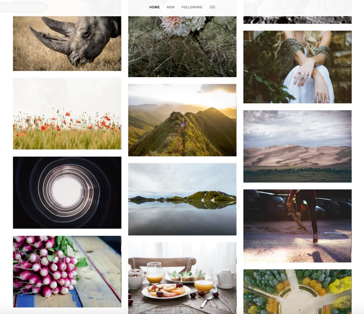 Screenshot of Unsplash.com - a great place for free stock images