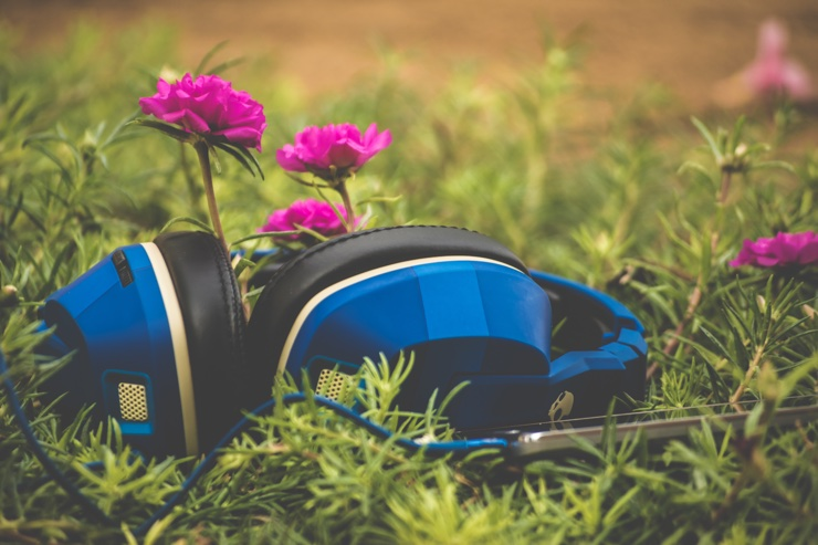 Blue headphones lying in grass beside pink flowers