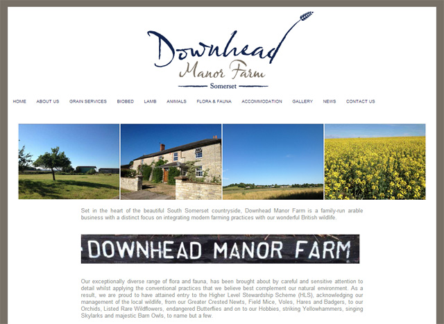 Downhead Manor Screenshot