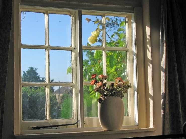 Summer evening sunlight shining through an old Edwardian window onto a potted plant