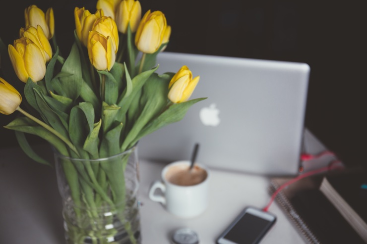 Fresh yellow tulips and laptop