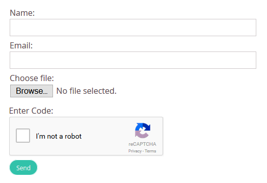 Example custom form with reCAPTCHA field enabled