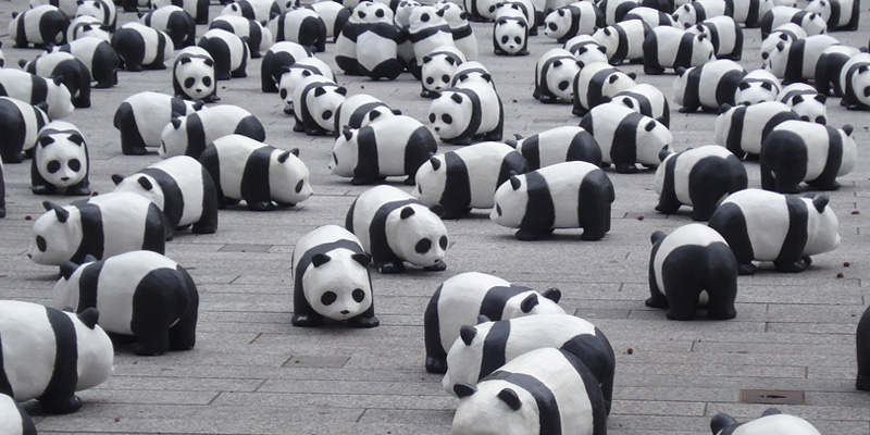 Pandas How To Succeed At SEO In 2016