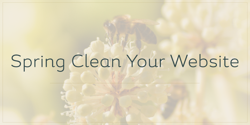 Spring Clean Your Website including SEO tips, Responsive design, Shop Sale and much more
