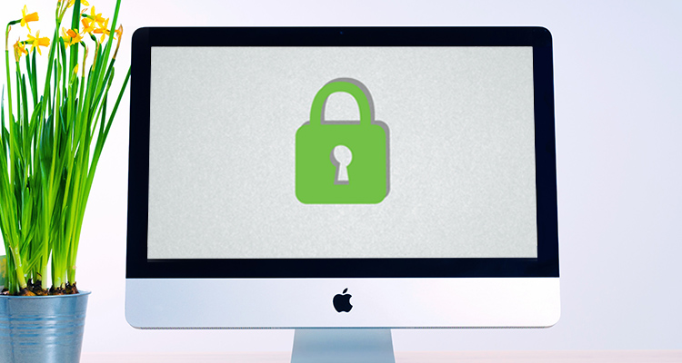 Green 'Secure' Padlock on a computer screen